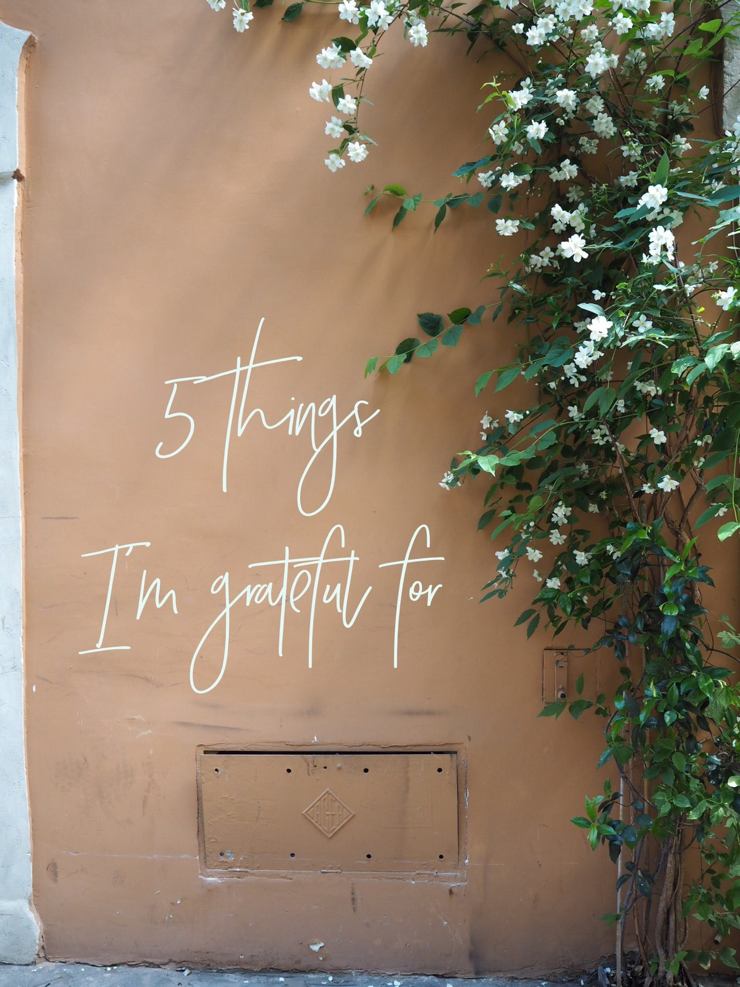 5 things I'm grateful for