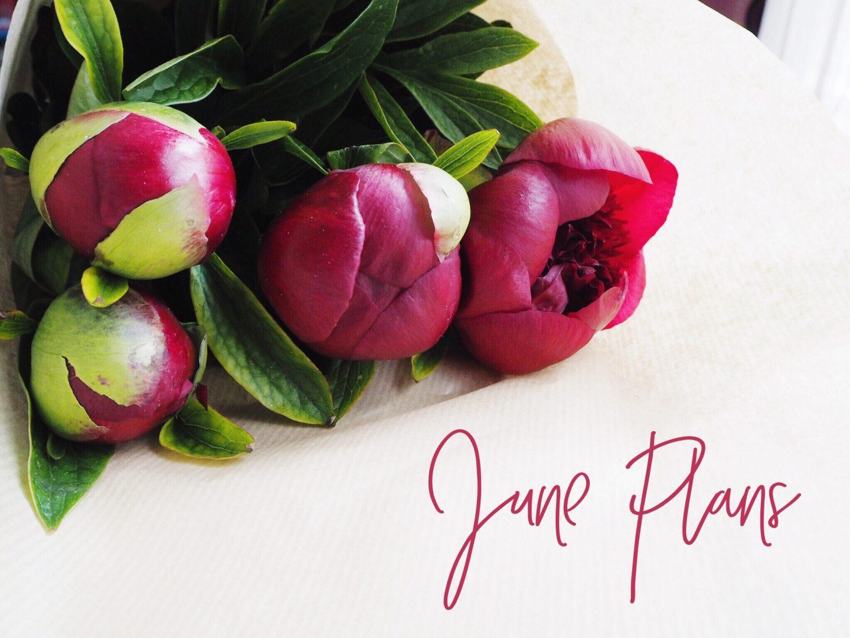 June Plans